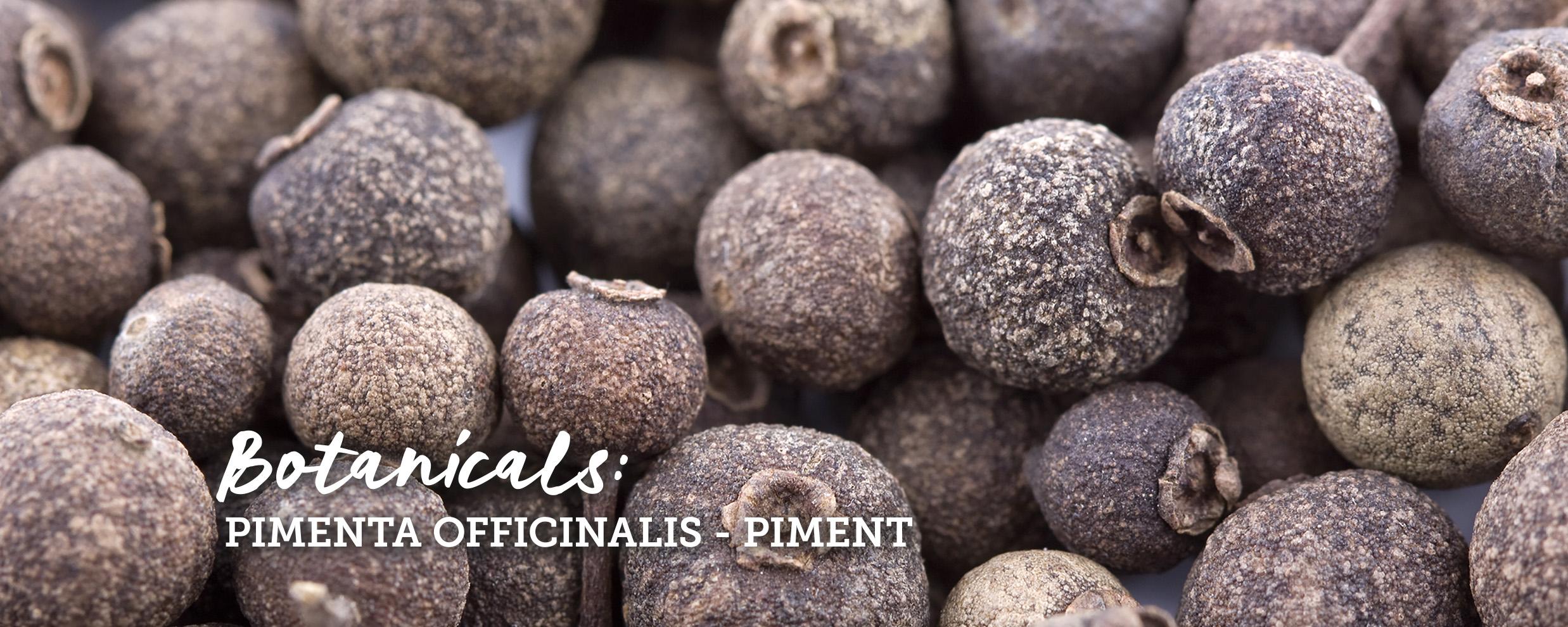 botanicals-piment